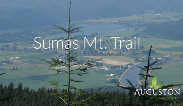 sumas mountain hike in abbotsford british columbia
