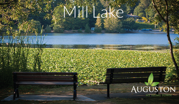 mill lake park in abbotsford bc